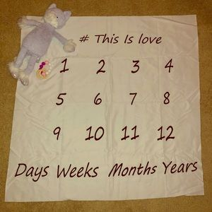 Other - Baby Day Week Month Year Blanket